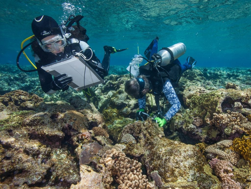 Guides for wreck diving in Australia